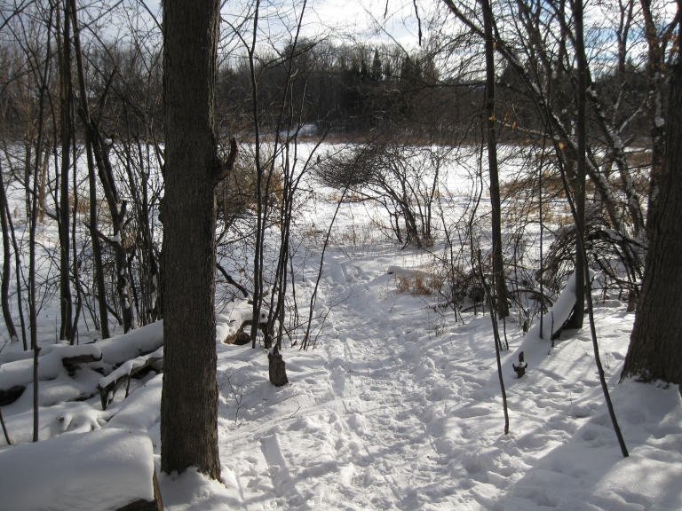 South March Highlands - Beaver Pond - D. Deby photo