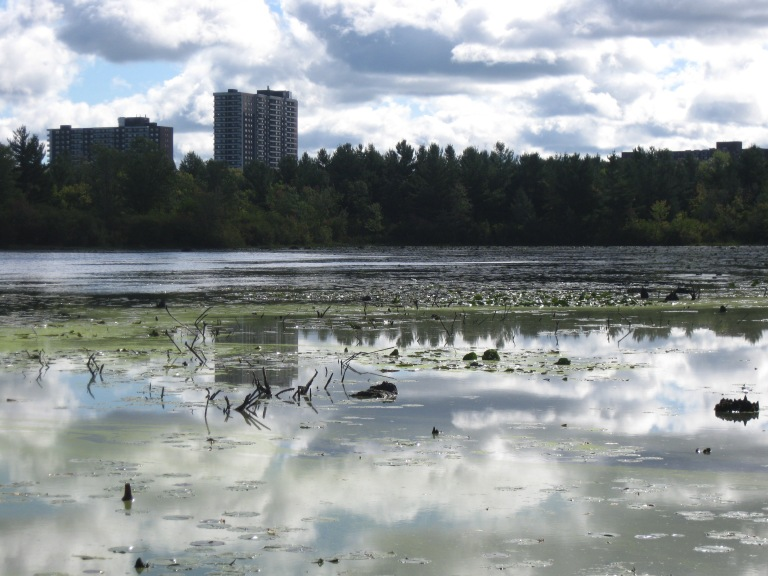 Mud Lake photo by D. Deby