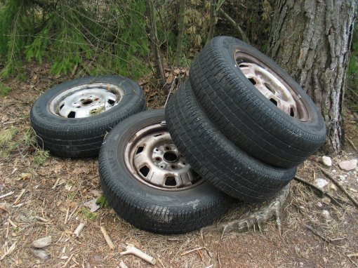 Tires in forest by User:Mysid, Wikimedia Commons http://commons.wikimedia.org/wiki/File:Tires_in_forest.jpg