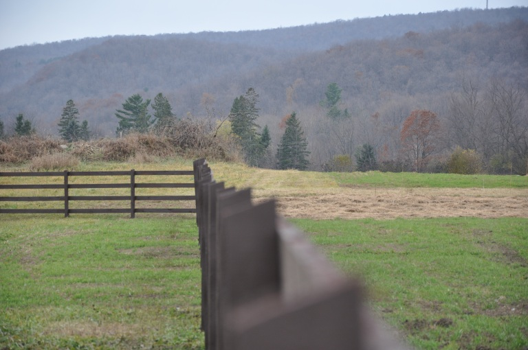 Photo courtesy Hendrick Farm