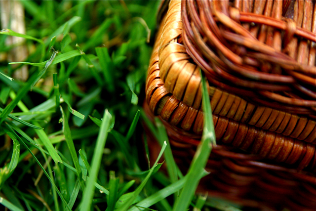 Wicker Picnic Basket Grass 6-1-09 1 by Steven Depolo https://www.flickr.com/photos/stevendepolo/3586893833/ on Flickr Creative Commons Attribution 2.0 Generic