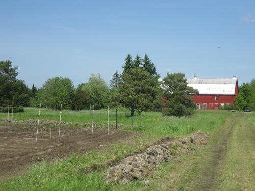 Just Food Farm - D. Deby photo