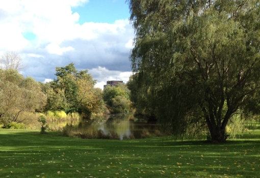 Ottawa Arboretum - D. Deby photo