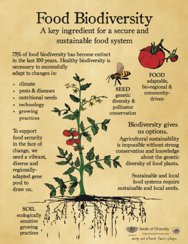 Poster courtesy Seeds of Diversity https://www.seeds.ca/Seedy-Saturday/volunteers