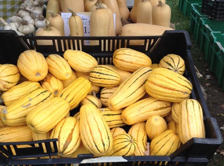 westboro-farmers-market-d-deby
